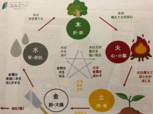 札幌東洋医学